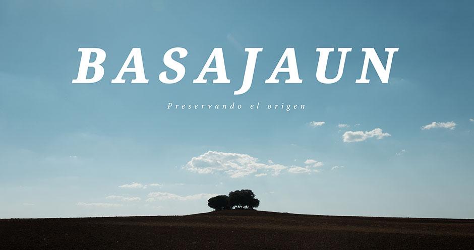 """""""Basajaun"""", de Salvador Arellano, en el Festival de cine de Málaga . Antiguo alumno EFTI"""