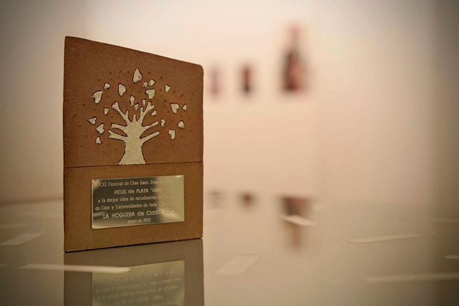 """""""La Hoguera"""": Ficus de Plata """"UMH"""" 2021"""