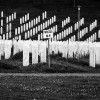 "©Javier Clemente ""1995. Recordando Srebrenica"". Memorial del Genocidio de Srebrenica"
